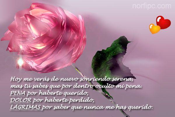 Citas Famosas Para Mujeres - 184871