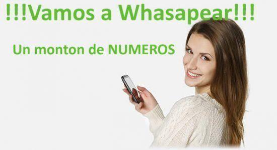 Quiero Conocer - 409558